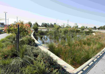 Harrisdale Green Rain Garden